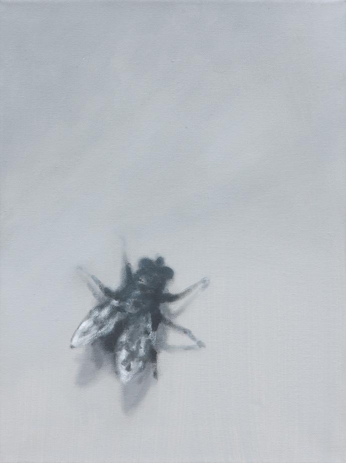 Die Fliege | 2012 | Acryl auf Leinwand | 40 x 30 cm