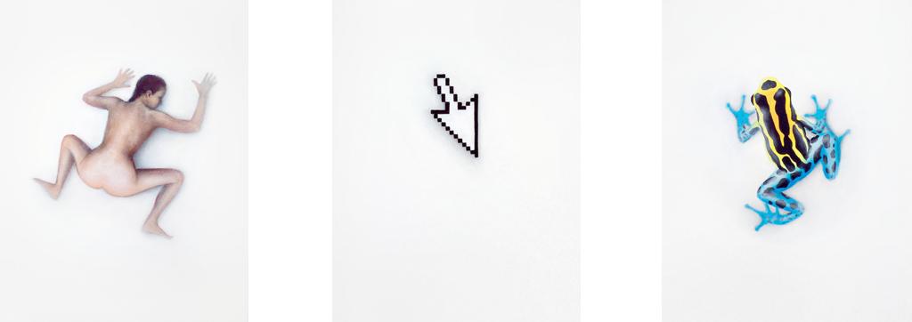 Zusammenhängend 05 (Frau kauernd, Computerfeil, Pfeilgiftfrosch) | 2012 | Acryl auf Leinwand | je 40 x 30 cm Triptychon